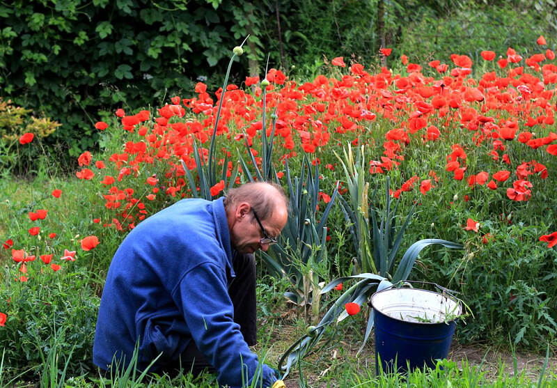 地中埋設物の枡は庭に隠れてる場合も!不当な解体費用請求の防ぎ方