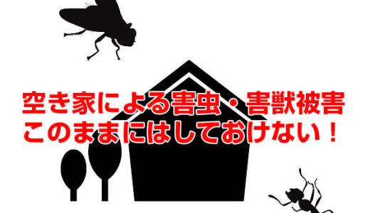 空き家による深刻な害虫被害!原因と対策とは?