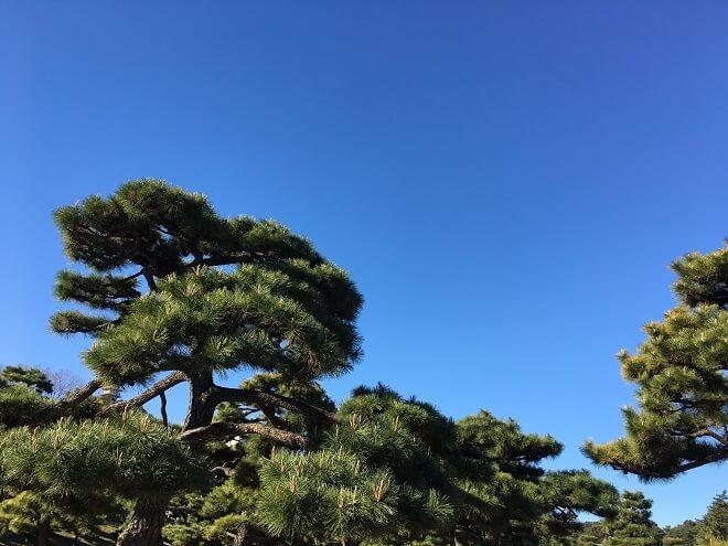 千葉県匝瑳市のおすすめ解体業者をお探しの方へ