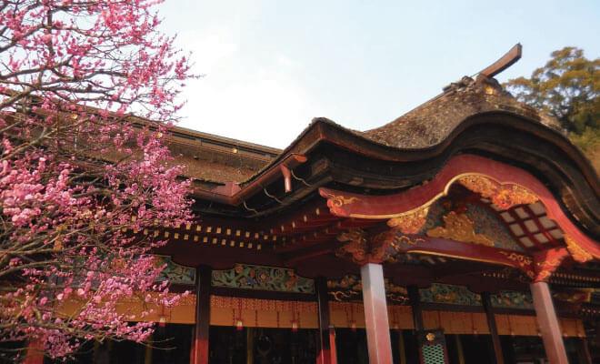 福岡県太宰府市の解体費用・相場のまとめ、安く解体工事するコツ