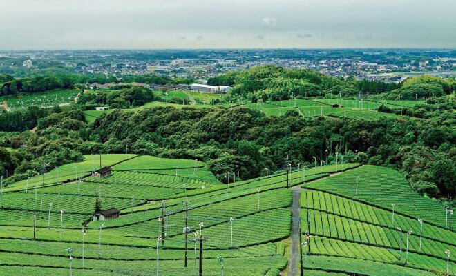 福岡県八女市の解体費用と相場