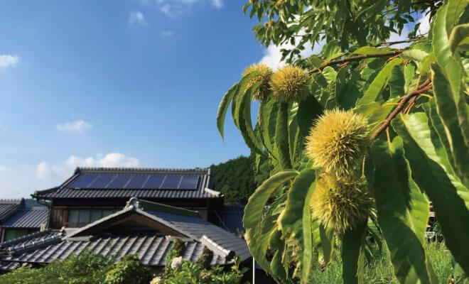 大阪府豊能郡能勢町の解体費用・相場のまとめ、安く解体工事するコツ