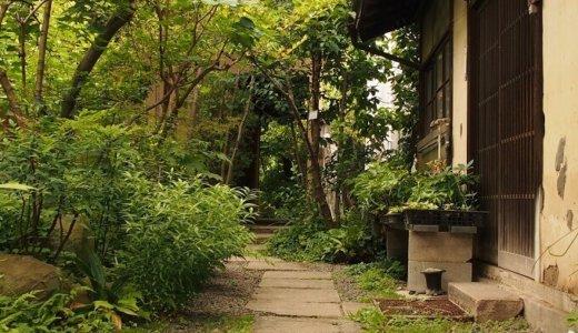 お庭の解体費用はどれくらい?庭石・庭木などの撤去費用の目安は?