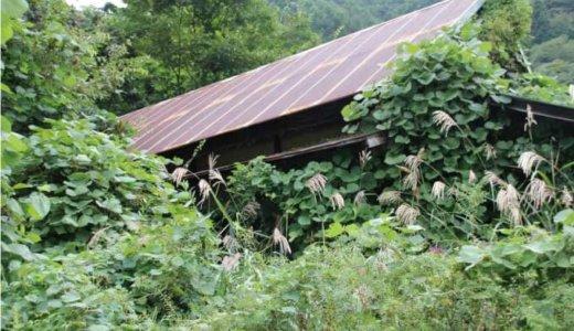 【鹿児島県鹿屋市】危険性の高い空き家の解体に、最大30万円の補助