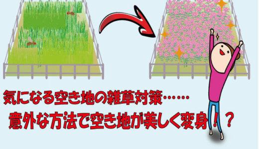 空き地の雑草対策には除草剤?土地を彩る意外な対策法も紹介!