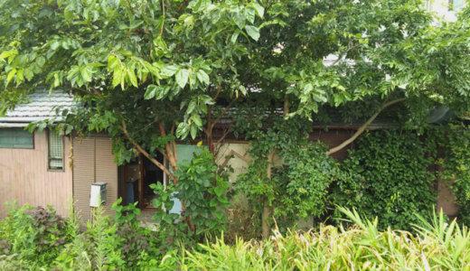 神奈川県横浜市旭区 木造平屋建て家屋15.5坪の解体事例