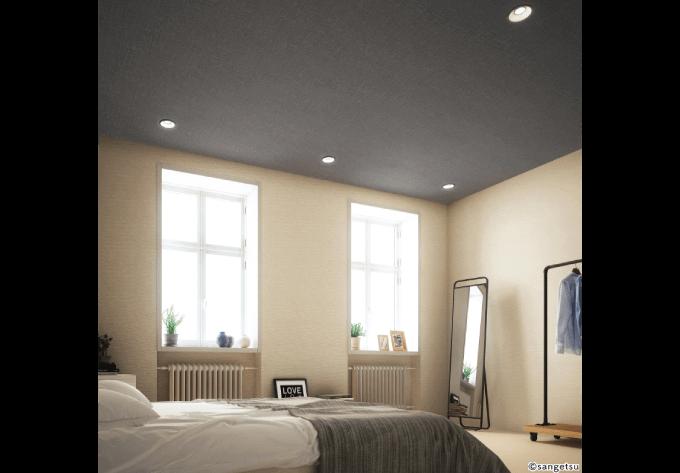 寝室天井アクセント